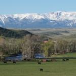 Stillwater River Ranch 4